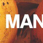 (FLV) Mango