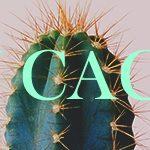 (INW) Cactus