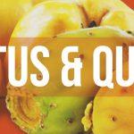 Cactus & Quince