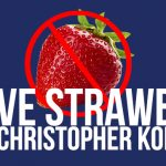 The Elusive Strawberry by Christopher Kopel