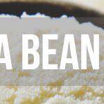 (FW) Vanilla Bean Ice Cream