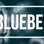 (VT) Blueberry