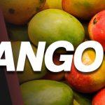 Mango ft Dragon Lady & Skittersmurf | Noted: 196