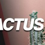 Cactus ft. Daniel The Hitman/Time Stamp Guy | Noted: Ep. 225